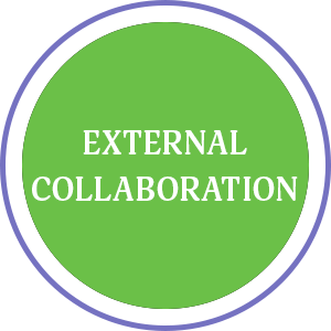 External-Collaboration