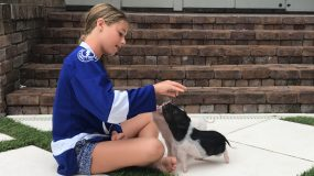 5 Reasons Why Therapy Animals Make the World a Better Place, by Claire Barrow