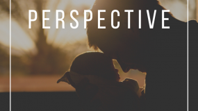 The Parent Perspective | June